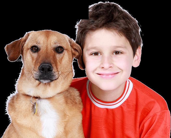 boy and dog home
