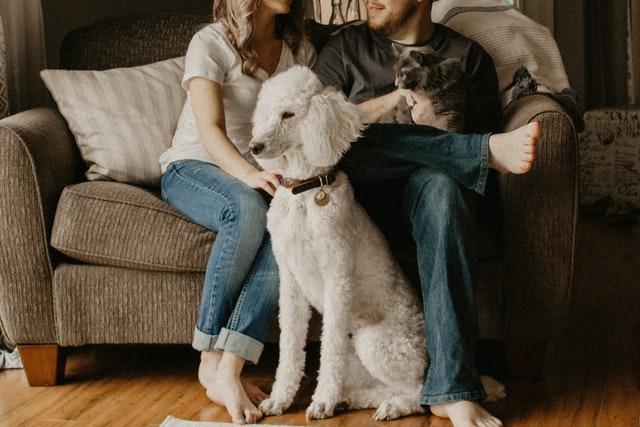 couple and dog at home sofa