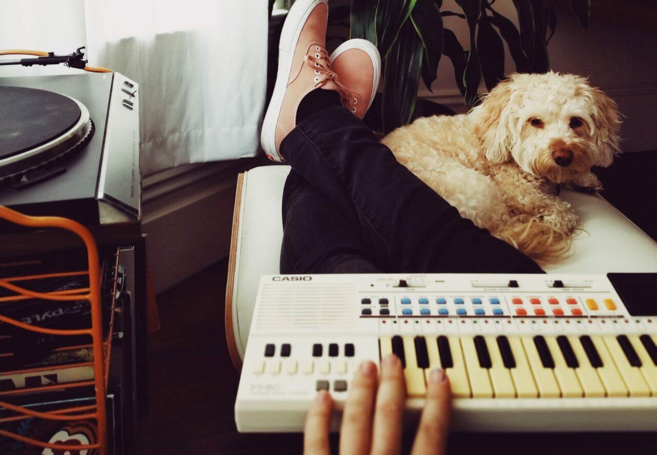 https://ilovemydogsomuch.com/wp-content/uploads/2021/02/dog-and-music-organ-e1628575398121-1280x887.jpg