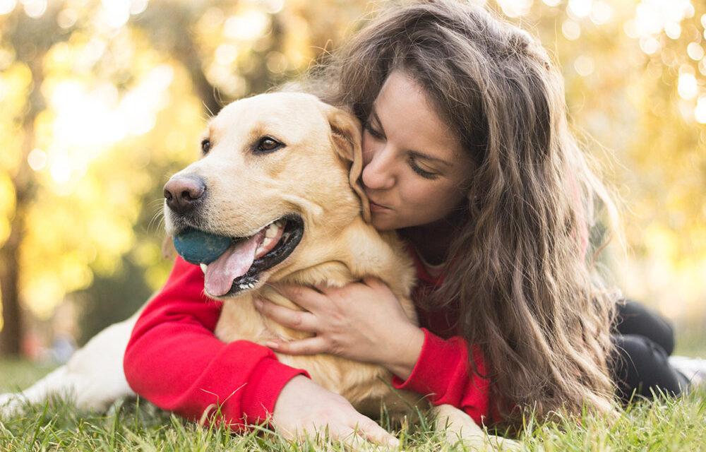https://ilovemydogsomuch.com/wp-content/uploads/2021/02/happy-dog-owner_labrador-1000x640.jpg