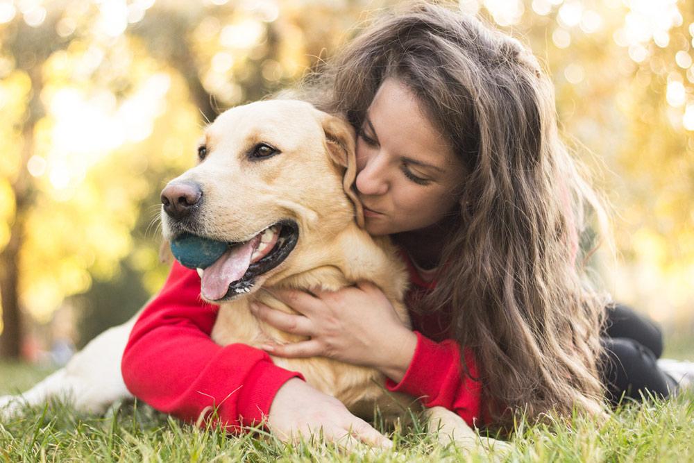 https://ilovemydogsomuch.com/wp-content/uploads/2021/02/happy-dog-owner_labrador.jpg