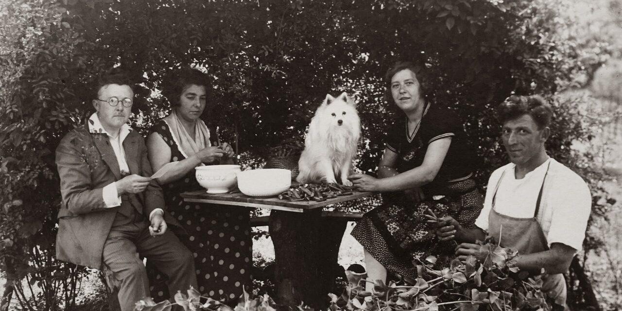 https://ilovemydogsomuch.com/wp-content/uploads/2021/02/old-dog-photo-history-1280x640.jpg