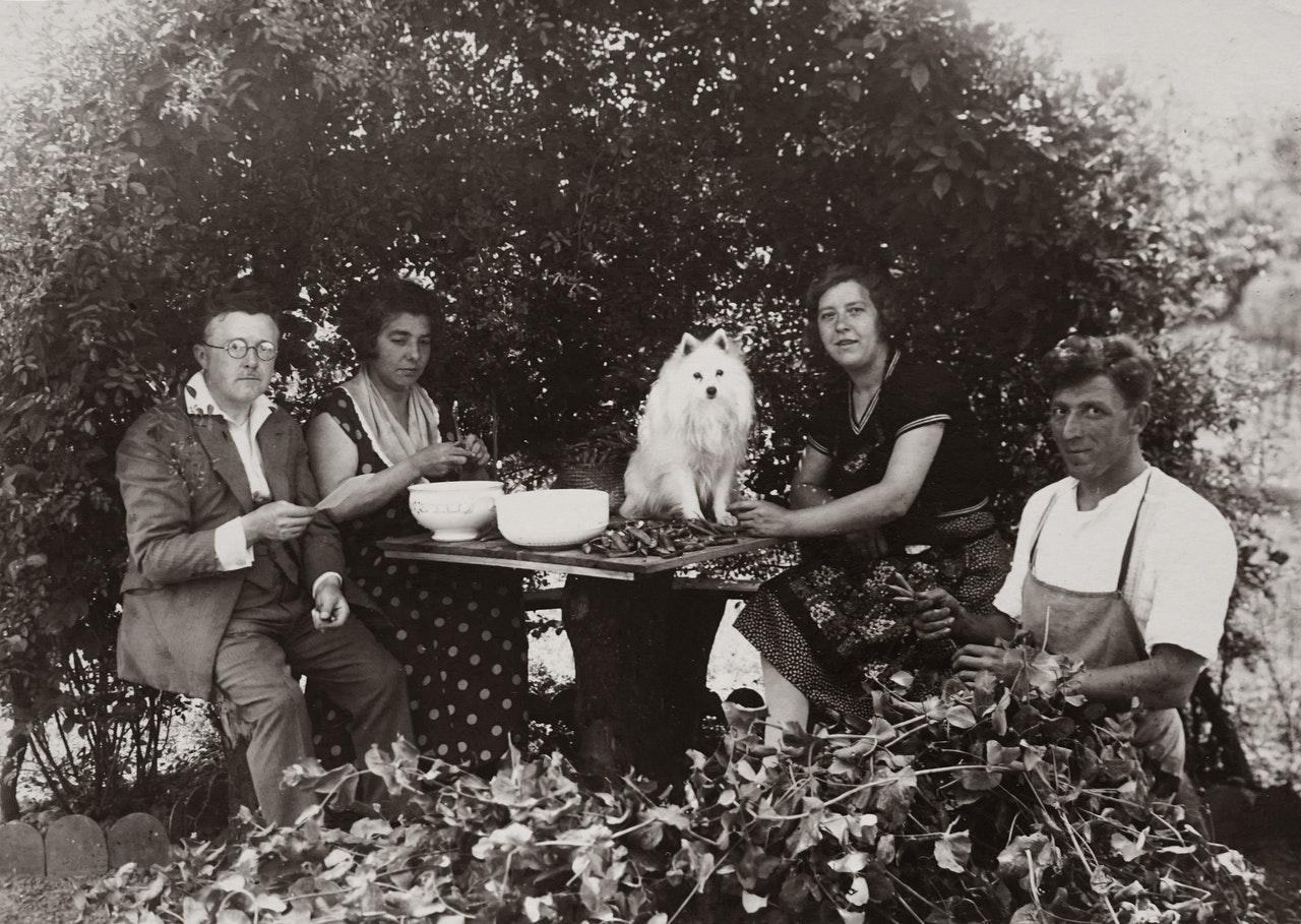 https://ilovemydogsomuch.com/wp-content/uploads/2021/02/old-dog-photo-history.jpg