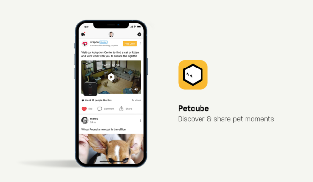 Dog Apps for Smartphones Petcube App Showcase