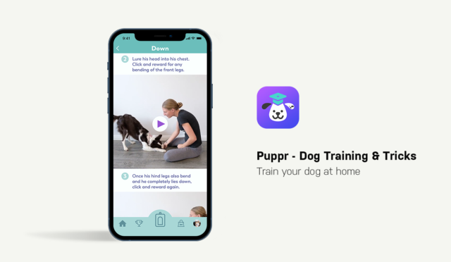 Dog Apps for Smartphones Puppr App Showcase