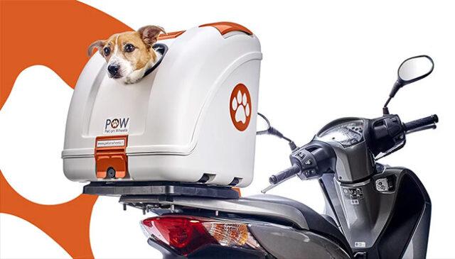 Dog Carrier System Dog Gadgets