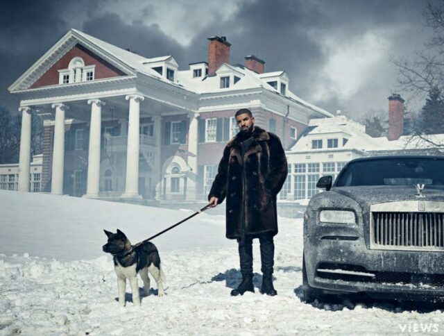 Drake and dog