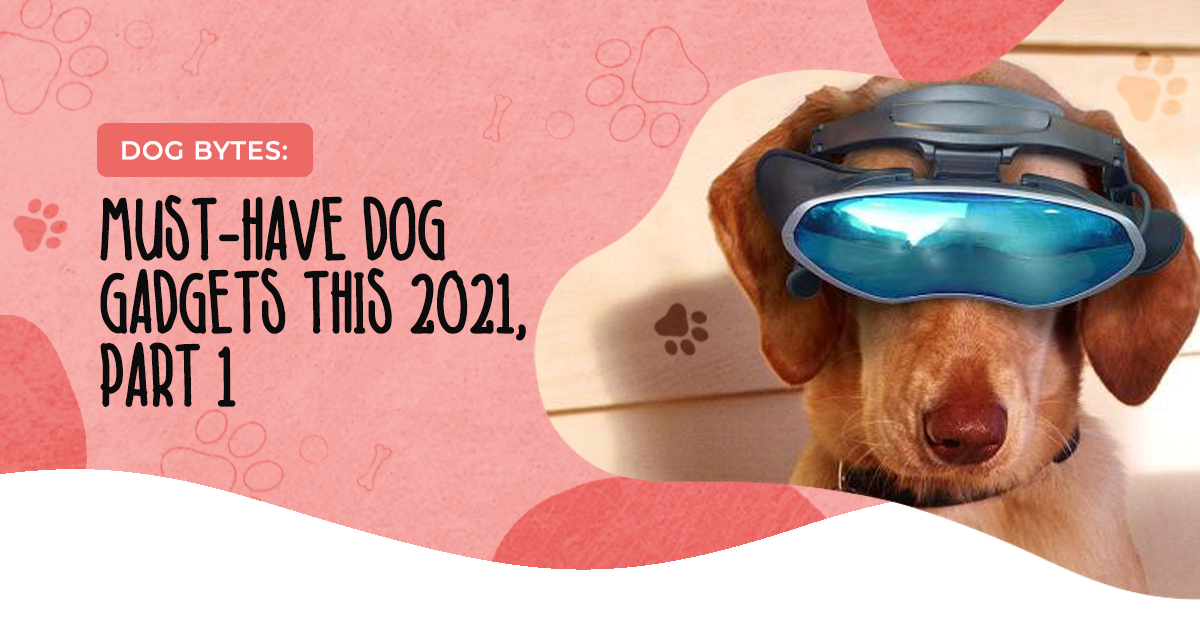 https://ilovemydogsomuch.com/wp-content/uploads/2021/03/ILMDSM-Article-49-Tech-Gadgets-For-Dogs-1.png