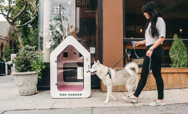 Smart Dog House Dog Gadgets