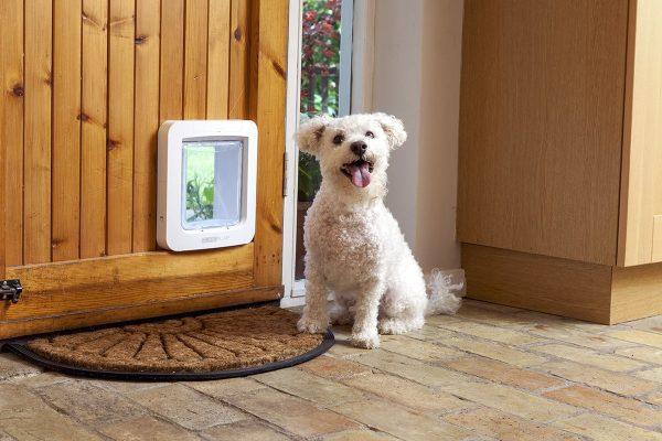 Smart Pet Door Dog Gadgets