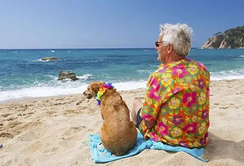 dog and owner on the beach