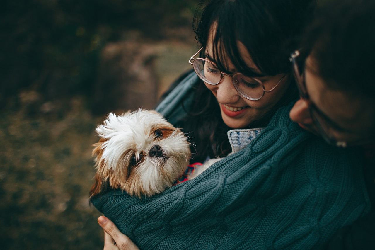 https://ilovemydogsomuch.com/wp-content/uploads/2021/03/dog-and-parents-hug-new-owners.jpg