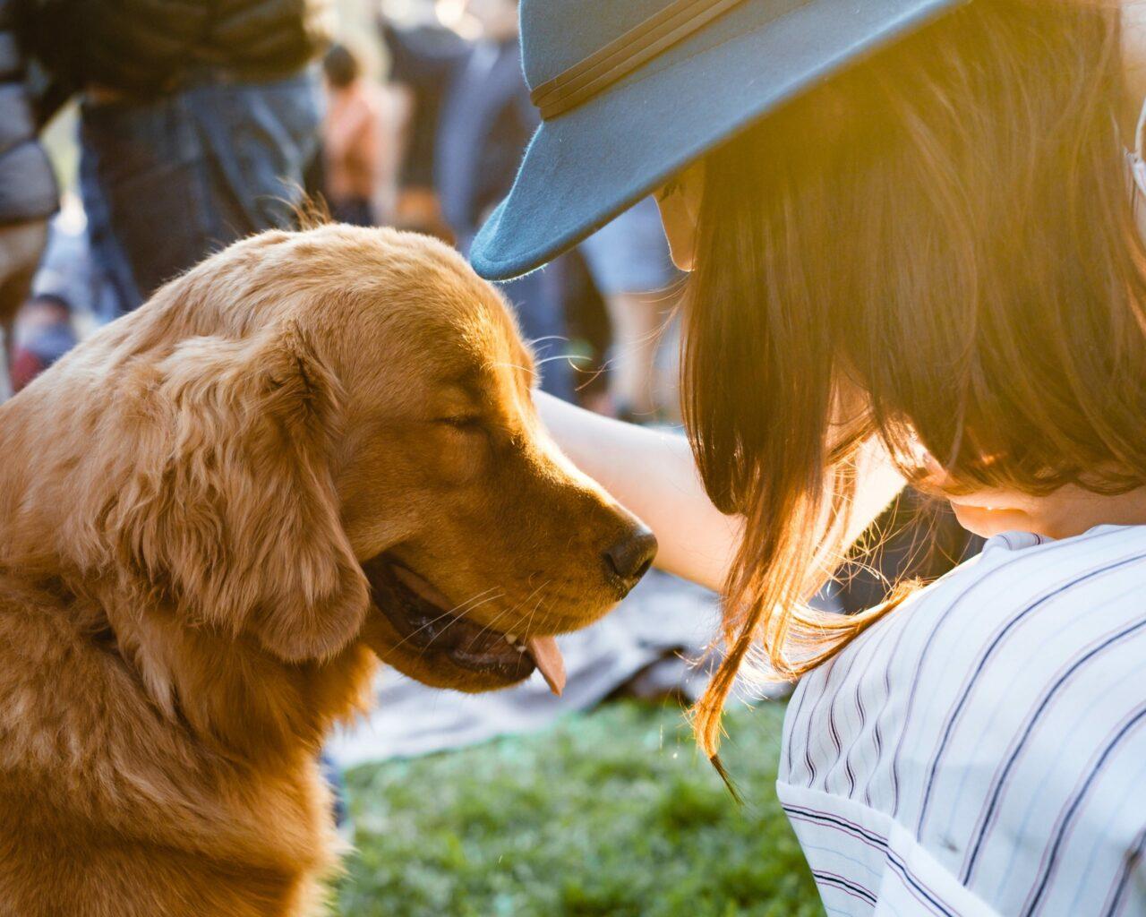 https://ilovemydogsomuch.com/wp-content/uploads/2021/03/happy-dog-1280x1024.jpg