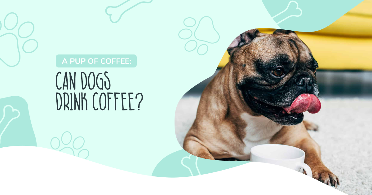 https://ilovemydogsomuch.com/wp-content/uploads/2021/04/Article-55-A-Pup-of-Coffee.png