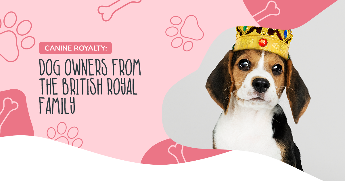 https://ilovemydogsomuch.com/wp-content/uploads/2021/04/Article-64-canine-royalty.png