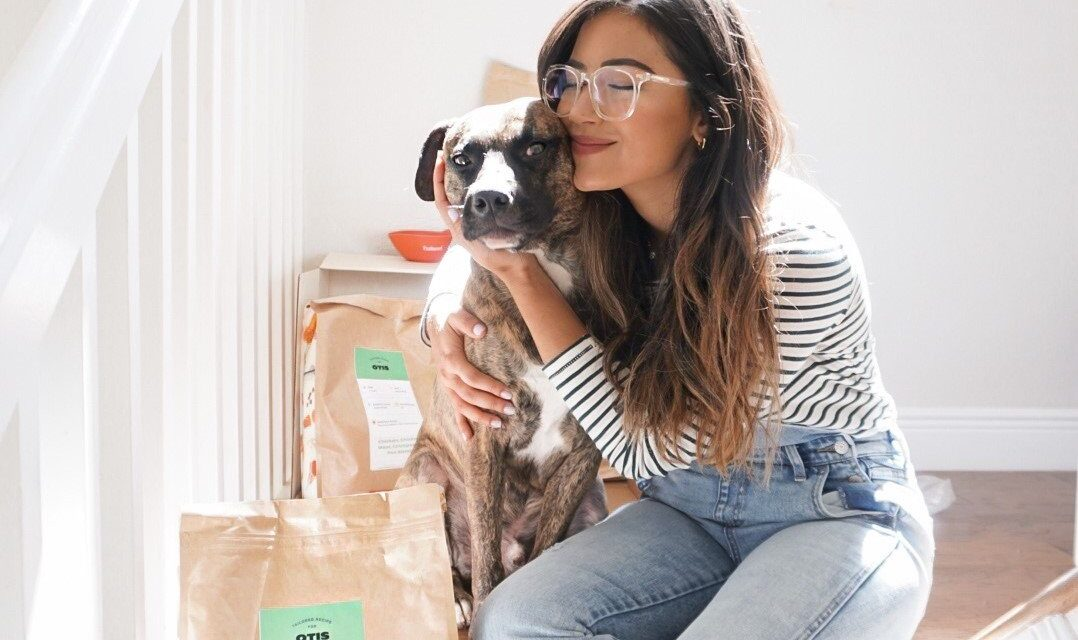 https://ilovemydogsomuch.com/wp-content/uploads/2021/04/Tailored_Benefits-of-Personalized-Dog-Food-1078x640.jpg