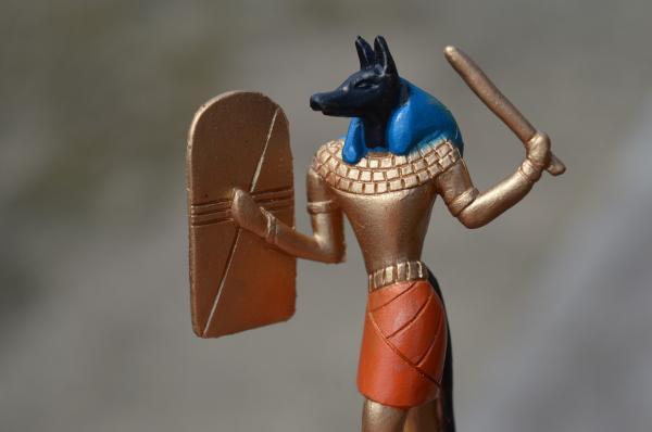 celebrity dog mythology anubis