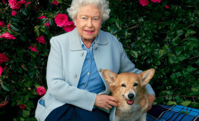 royal dog owners queen elizabeth