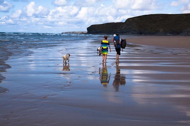 family dog friendly date on beach