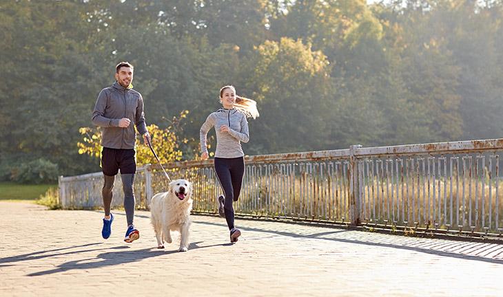 https://ilovemydogsomuch.com/wp-content/uploads/2021/08/dog-exercises.jpg