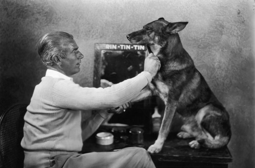 https://ilovemydogsomuch.com/wp-content/uploads/2021/08/tin-tin-celebrity-dog.jpeg