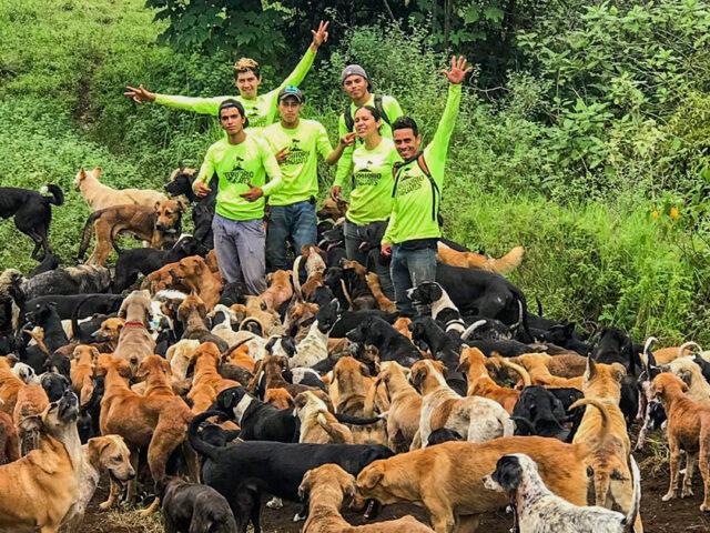 Costa Rica dog sanctuary