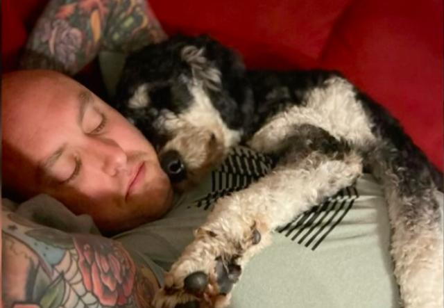 VA laws service dogs for PTSD