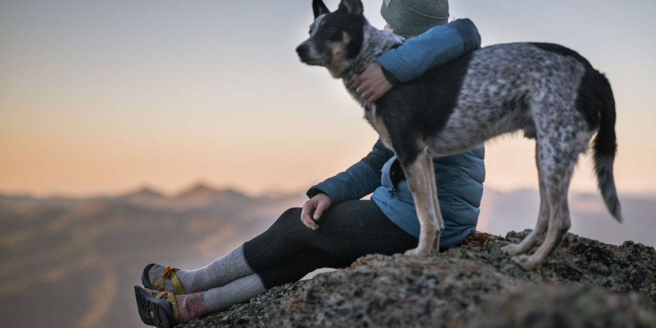 https://ilovemydogsomuch.com/wp-content/uploads/2021/09/dog-and-owner-on-top-of-mountain-1280x640.jpeg