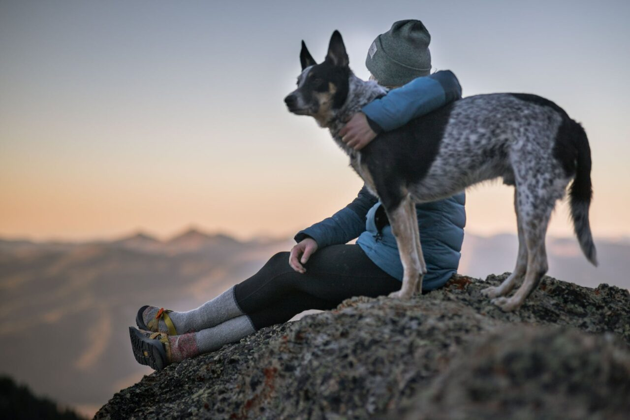 https://ilovemydogsomuch.com/wp-content/uploads/2021/09/dog-and-owner-on-top-of-mountain-1280x853.jpeg