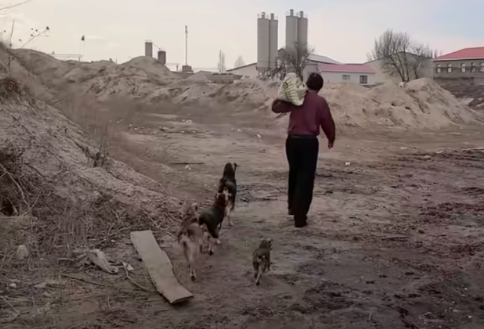 https://ilovemydogsomuch.com/wp-content/uploads/2021/09/dog-rescue-story-homeless-man-stray-dogs-featured.png