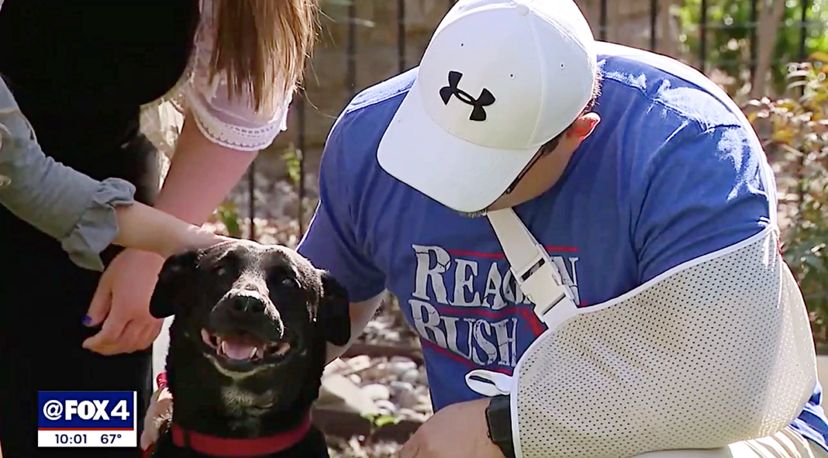 https://ilovemydogsomuch.com/wp-content/uploads/2021/09/dog-saves-familys-lives.png