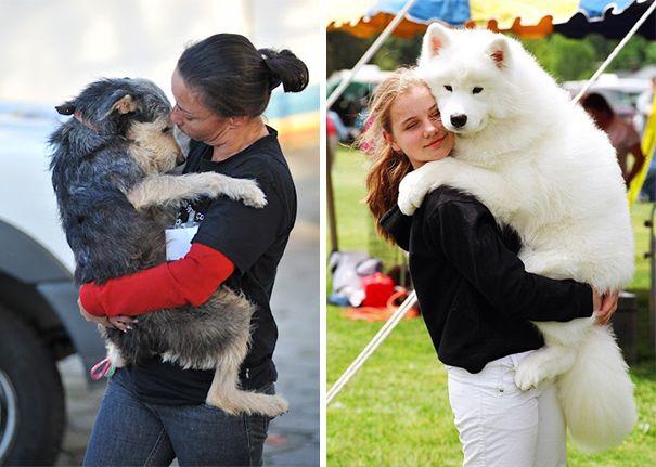 https://ilovemydogsomuch.com/wp-content/uploads/2021/09/dogs-love-humans.jpg