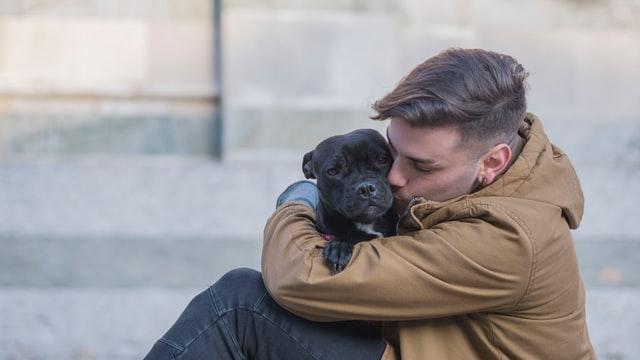 hug and kiss dog
