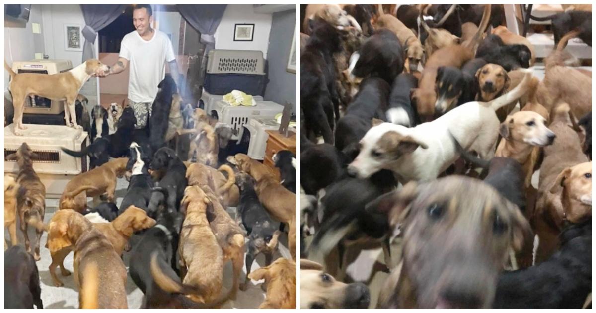 https://ilovemydogsomuch.com/wp-content/uploads/2021/09/man-saves-300-dogs-during-hurricane.jpg