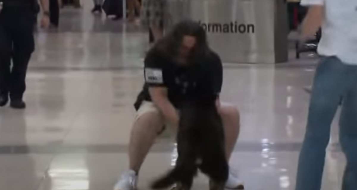 https://ilovemydogsomuch.com/wp-content/uploads/2021/09/marine-officer-and-canine-reunion-1200x640.png
