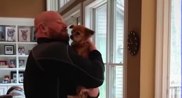 mo senior dog with man 3
