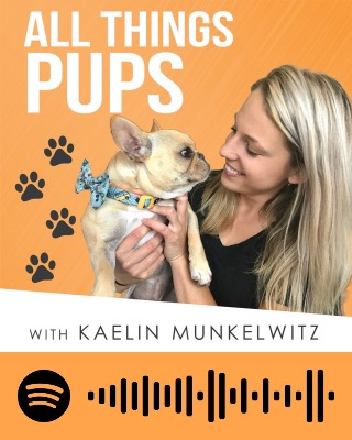 All Things Pups with Kaelin Munkelwitz
