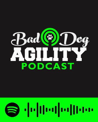 Bad Dog Agility