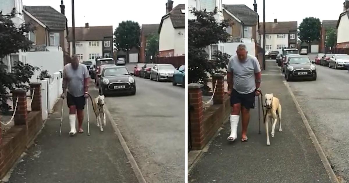 https://ilovemydogsomuch.com/wp-content/uploads/2021/10/empathetic-dog.jpg
