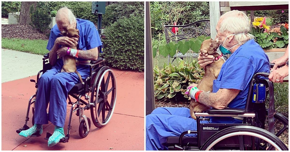 https://ilovemydogsomuch.com/wp-content/uploads/2021/10/navy-veteran-reunites-with-chihuahua.jpg