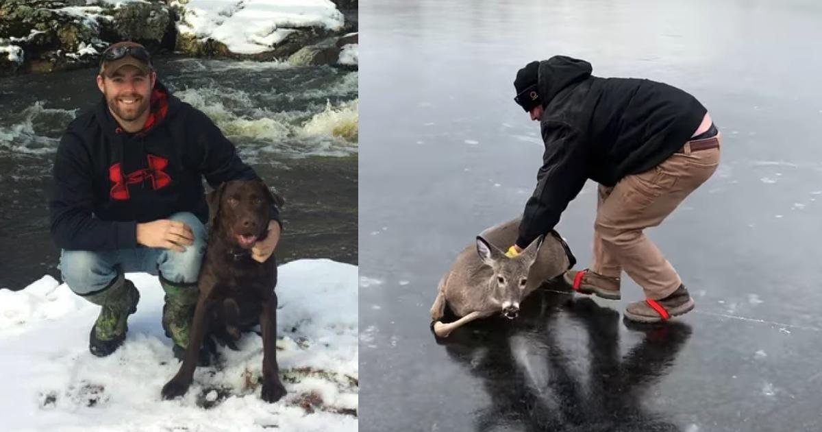 https://ilovemydogsomuch.com/wp-content/uploads/2021/10/rescue-doe-stuck-on-ice.jpg